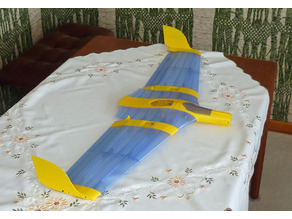 Flying Wing Buratinu Midi 1000