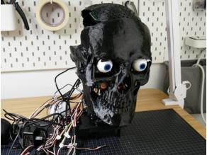 Humanoid Robot Skull