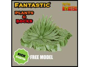 KICKSTARTER-Fantastic Plants and Rocks