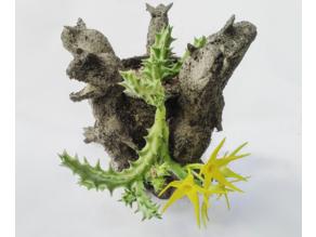 Carnotaurus planter
