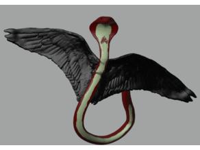 Lopango Winged Firecobra