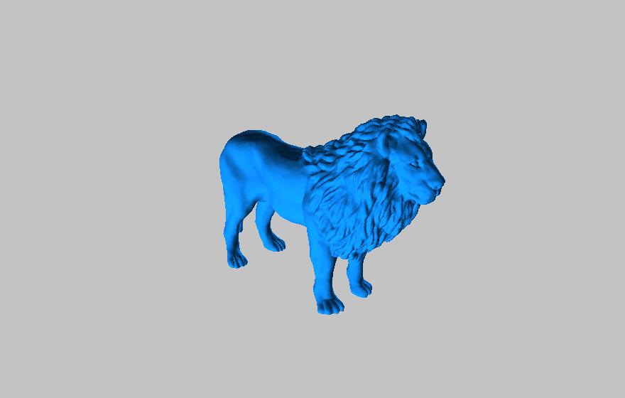 A Male Lion