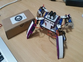 Q1 Robot custom