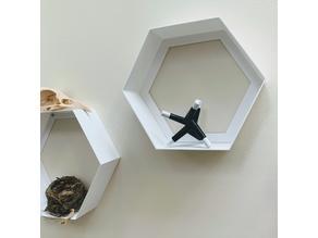 Hexagon Shelf - Minimal Design