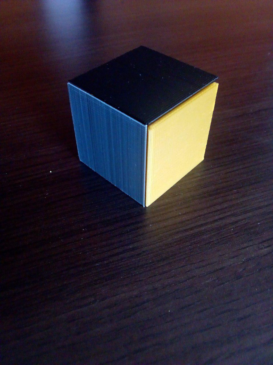 Puzzle Cube (easy print no support) by WildRoseBuilds