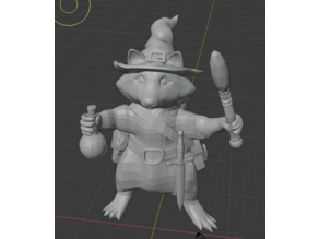 racoonman wizard with and without hat