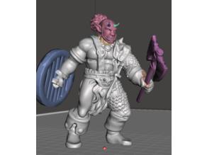 Rhokk, Half-Orc Axe Fighter