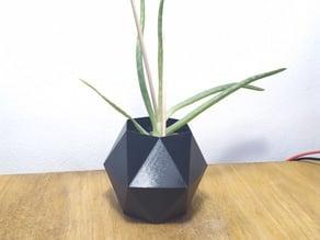 Hexagonal flower pot #5