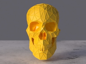 Human Skull Figurine Skeleton