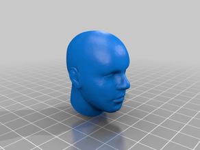 Human Head 1/6 Scale