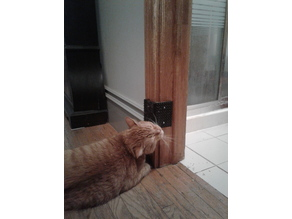 Kitty Nip Corner Scratcher