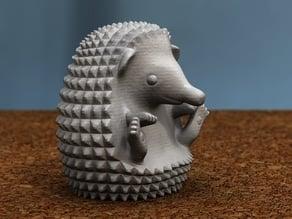 hedgehog sitting