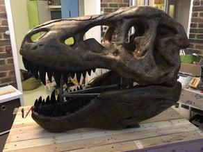Large T Rex Recut Skull