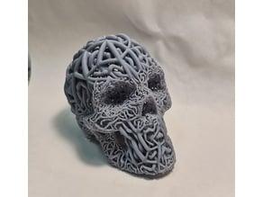 Skull Doublemesh or Dualmesh (4 variants) art, SLA, DLP. PACK1