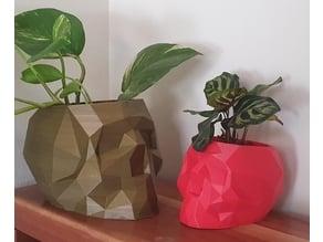 Geometric Skull Pot With Drainage