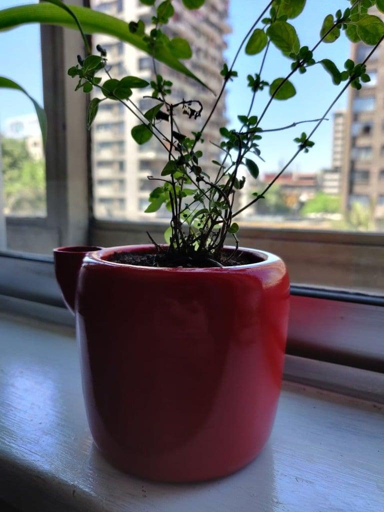 Plantero - Self-Watering planter