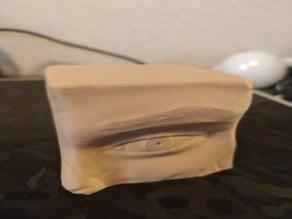 Eye Sculpt Study