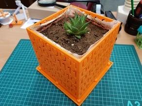 Coded Prunning Flower Pot