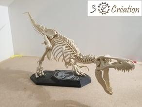 Socle platine squelette T-Rex - T-Rex skeleton base
