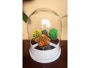 Glass Dome with Plant Pots