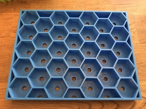 Succulent Propagation Tray (Hex)