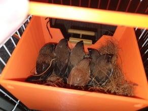 Finch Box for Society finch