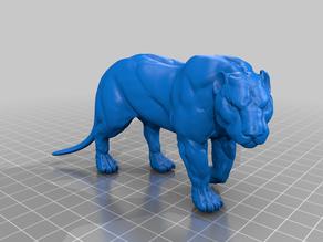 Big Cat - Lion - Puma - Panther