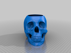 Human Skull Pot - With Drainage Hole and Saucer