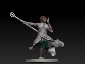 Halfling Monk with Staff