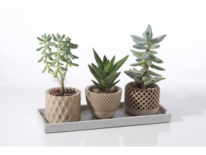 Modern geometric Succulent plant pot