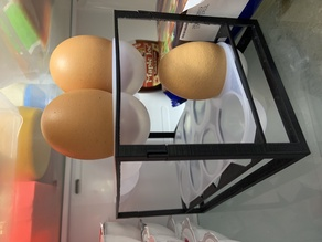 Egg tray structure (LG Fridge)