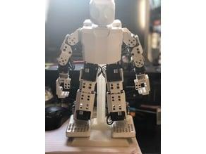 Darwin Mini Robot Display Stand