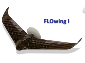 FLOWing1 RC Airplane Wing Confirmed Flying