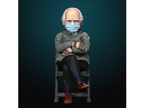 Bernie in Mittens
