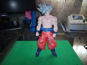 Goku Ultra Instinct Dragon Ball Z