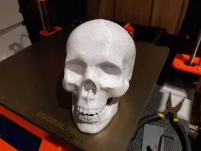 Hollow skull container
