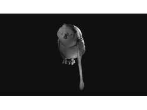 Morai (Ahsoka's Convor Bird from Star Wars: Rebels)