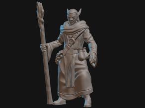 Elf Druid Miniature