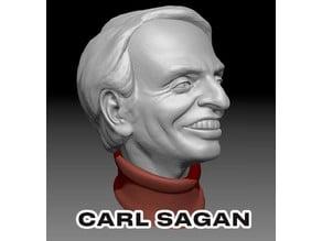 Caricature Sculpture of Carl Sagan