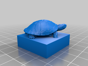 Turtle on a Lego Duplo compatible brick