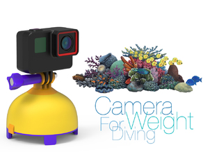 Camera Weight for Diving
