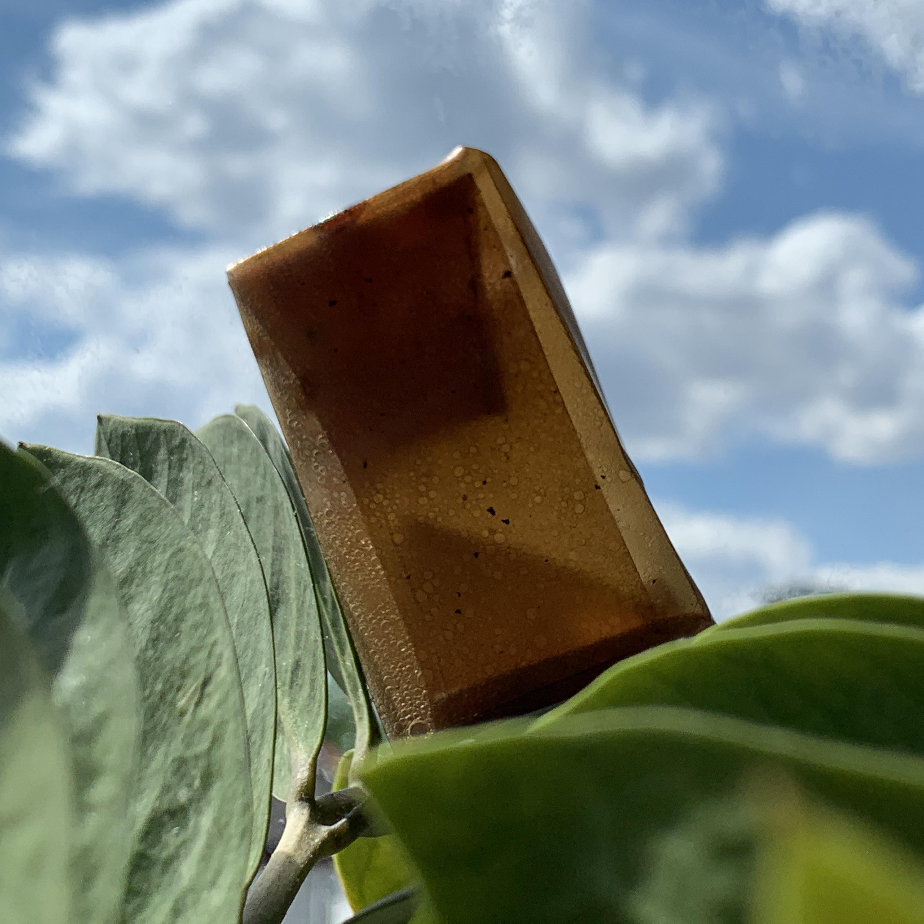 Folding Box bioplastic pattern