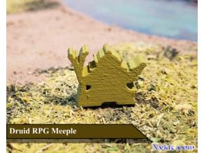 Druid Meeple - RPG - Dnd