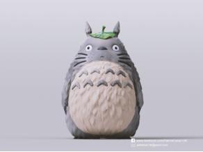 Totoro(My Neighbor Totoro)