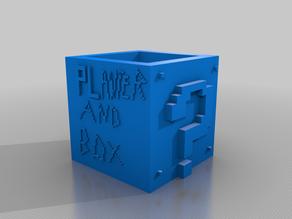 Super Mario Planter Box