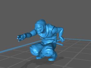 Shocker Ninja