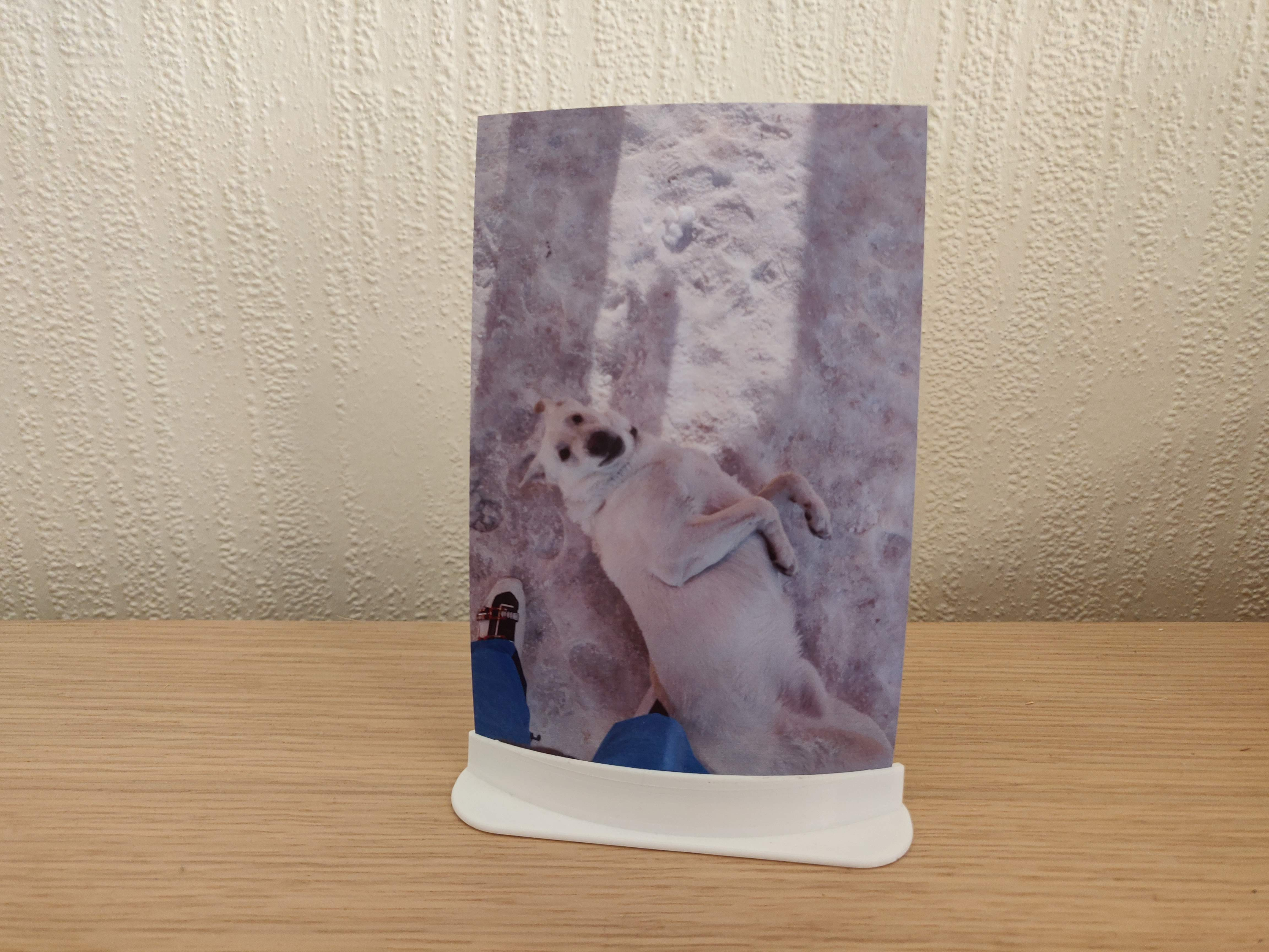 4x6in Photo Holder Stand