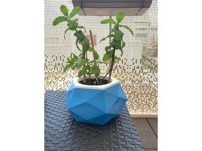 Vase mode flower pot