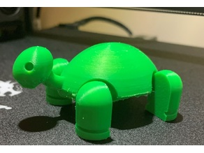 Articulated Turtle