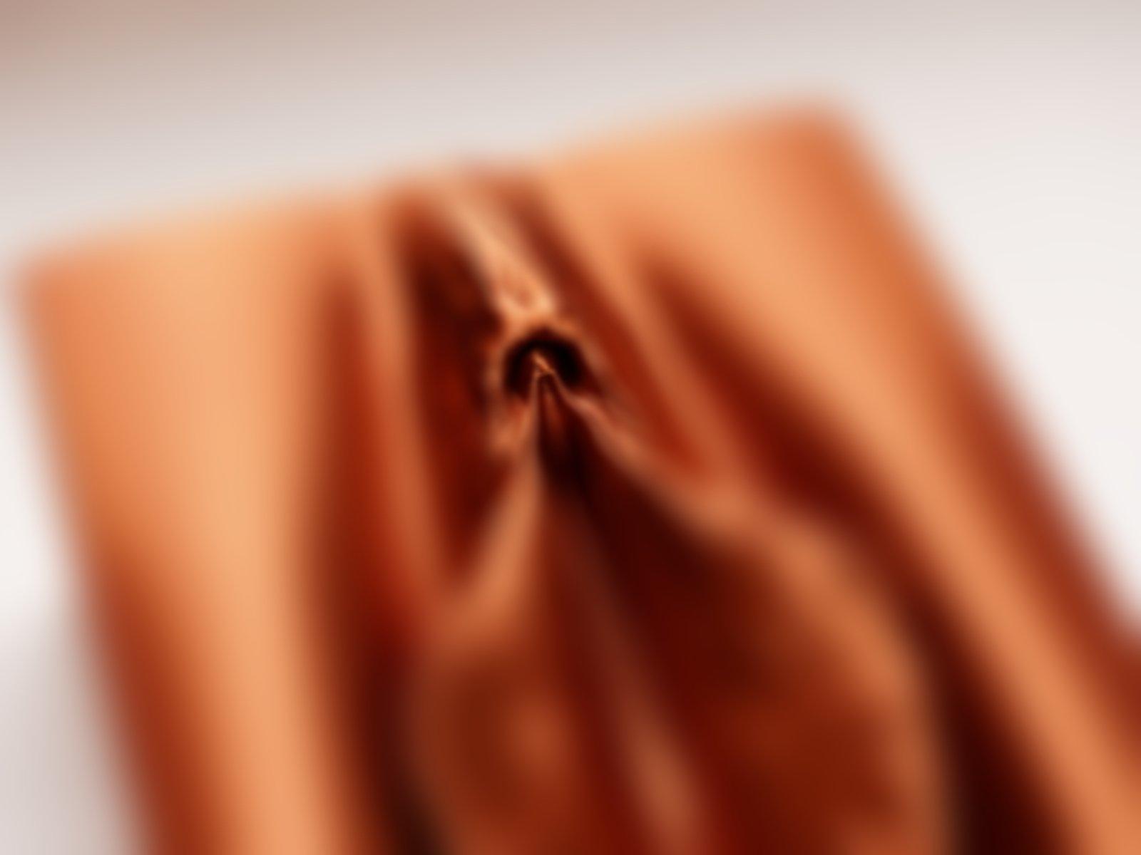 Vulva (NSFW)